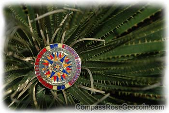2006 Compass Rose Geocoin by OshnDoc